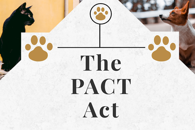 The PACT Act